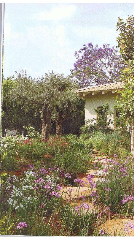 Garden Ideas Mediterranean 13 best mediterranean garden ideas images on pinterest