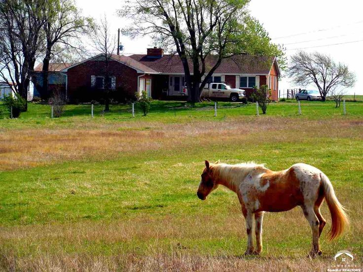 Spectacular views are in abundance for this all brick home on 80 acres north of Osage City. Complete with 81x60 ft. Indoor Riding Arena, 76x24 ft. stable, loafing shed, tack room and pole barn, this property is a horse lover's dream! This estate is currently apart of the Mountability Therapeutic Riding Program, Inc. which is a 501C3 Path International Certified Center. Property includes horse and equipment to continue program. Home features CO Marble fireplace. Larry Northrop (785) 842-3535