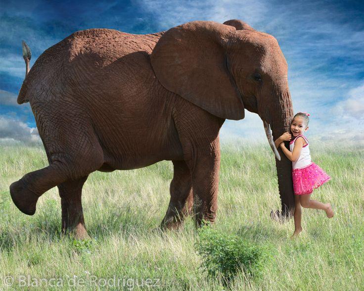 Titulo: Mi pequeño elefante  Esta imagen es parte del proyecto 365 del 2014, si quieres ver todas las fotos entra a este link  https://goo.gl/E1jy1o  Hotmail: blancaelenabolivarleal@hotmail.es Gmail: rybfotografia@gmail.com Yahoo: blancaelenabolivar@yahoo.mx Instagram: rybfotografia