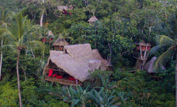 Home - Dominican Tree House Village