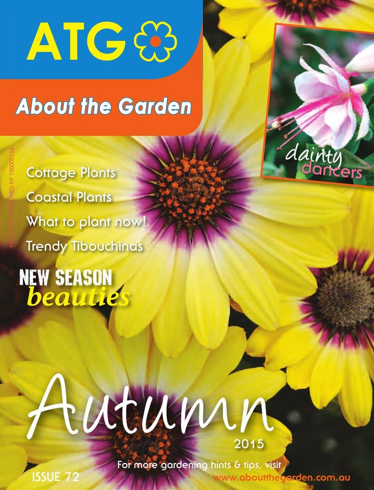 Everything you need to get started in your garden this Autumn. Get the tips on Cottage Garden Plants, Coastal Planting Tips, What to plant now!, Trendy Tibouchinas, New Season Beauties and dainty dancers. PLUS lots of information on plant care and pest control. For more great garden reads visit www.aboutthegarden.com.au
