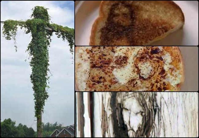 11 Penampakan Yesus Kristus yang paling Aneh di Dunia