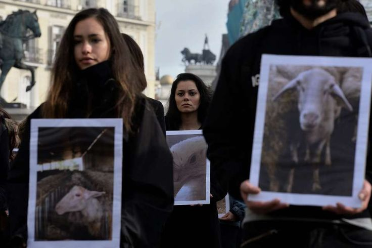 Animal rights activists from ( Igualdad Animal ) hold up pictures of animals they say are mistreated during a demonstration in Madrid on 9 th December, 2017.