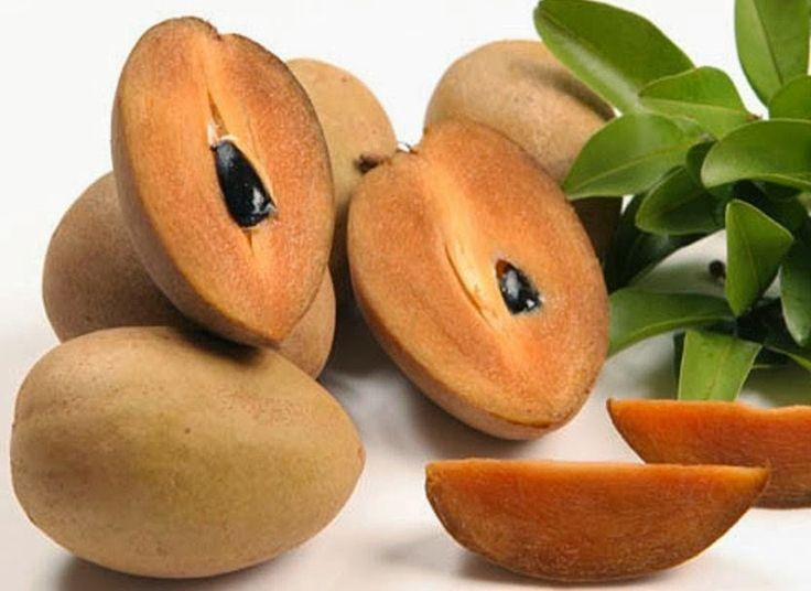 Kandungan serat yang tinggi dalam buah sawo juga berguna untuk melancarkan pencernaan dan mencegah sembelit yang Sering dialami oleh para ibu hamil.