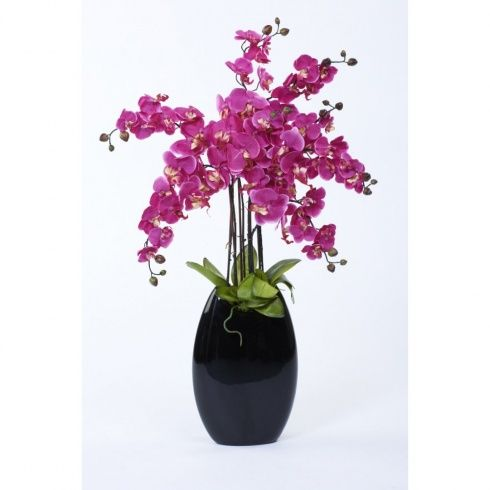 Also available in White this beautiful orchid display will look stunning when gracing the reception desk of an office or company foyer.