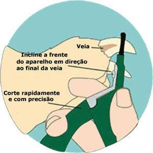 Mastercuca: Forma correta de cortar unhas do seu animal