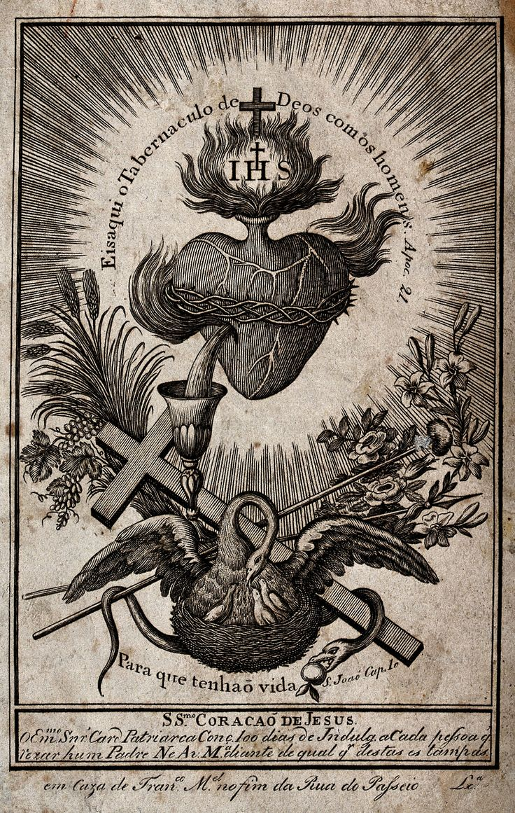 Sacred Heart illustration, featuring the symbolism of the pelican, which supposedly pierces itself to let its young drink