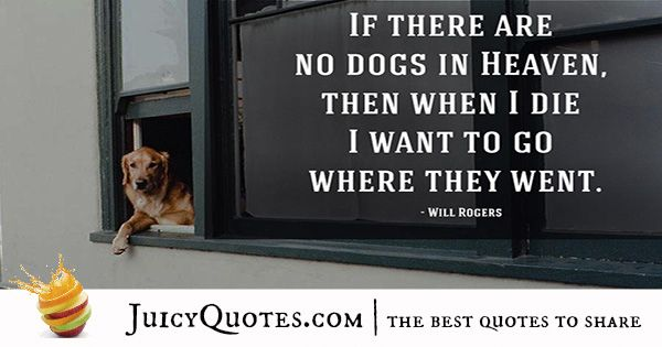 Quotes About Dogs - 43