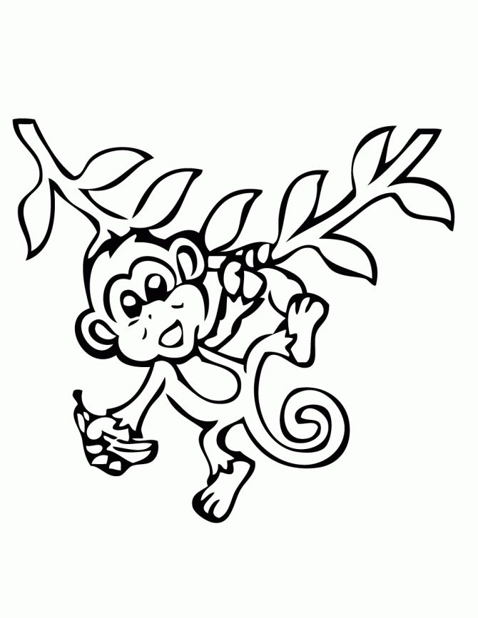 Monkey Coloring Pages Monkey