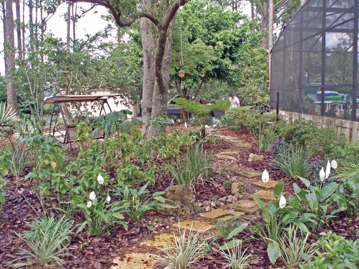 17 best images about florida garden on pinterest gardens for Landscape design orlando