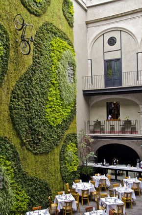 Very cool Green Wall / Garden on the wall in Mexico City . Great looking restaurant!