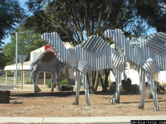Tin camels Norseman Western Australia • Aussie big things Australia tour