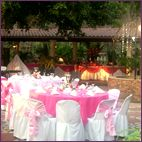 Wedding Reception Food: FAQs Answered by Experts