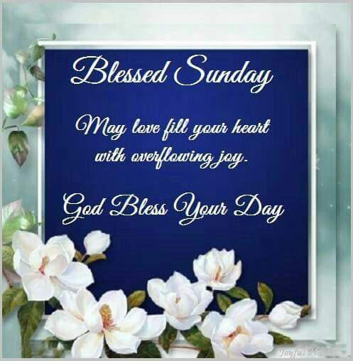 Blessed Sunday....Good Morning