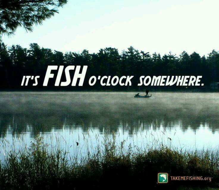 It's fish o'clock somewhere!