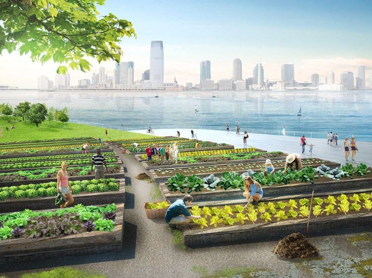 Compost islands in NYC helping to make use of waste in a productive way. Visions of the future...