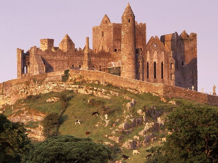 IrelandCashel, County Tipperary, The Rocks, Castles In Ireland, History Of Ireland, Beautiful Places, Architecture, Irish, Travel
