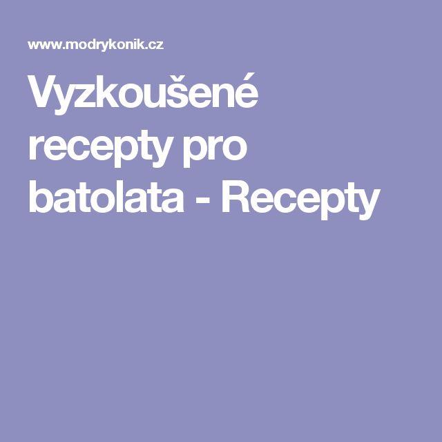 Vyzkoušené recepty pro batolata - Recepty