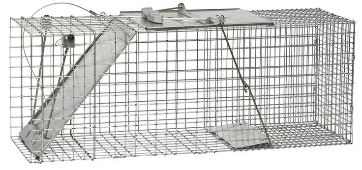 Woodstream 1085 Cage Trap, Easy Set Pest control