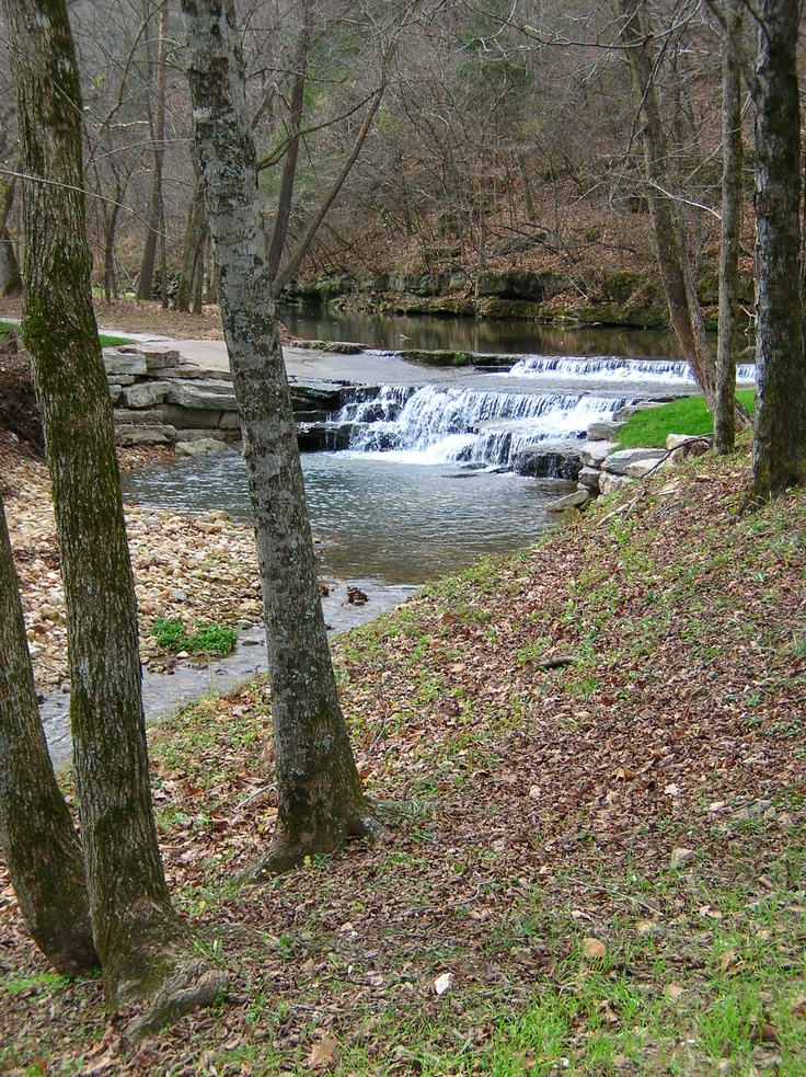 17 best images about dogwood canyon on pinterest parks for Dogwood canyon