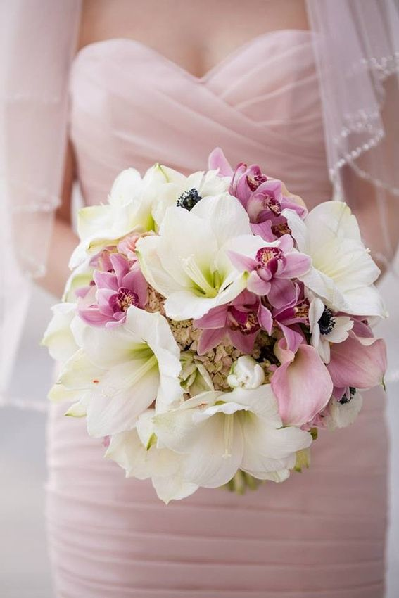 Blush Pink, Ivory, Mauve, and White Bridal Bouquet with Cymbdium Orchid, Hydrangea, Amaryllis, Mini Calla Lilies, Anenome, Parrott Tulips- Chic Round Hand Tied bouquet, Artistic Retro Glam Wedding Jasmine Galleria Chicagoland Floral & Decor