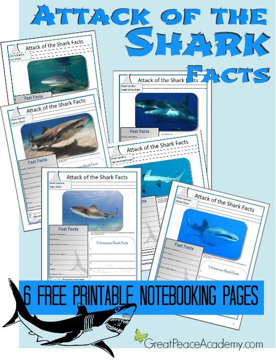 75 Outstanding Shark Learning Resources via Great Peace Academy #SharkWeek