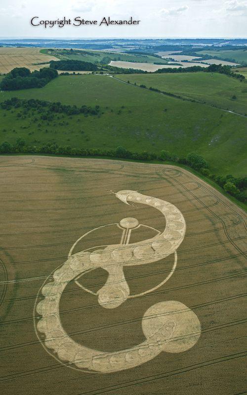 Crop Circles Яйцето и змията...