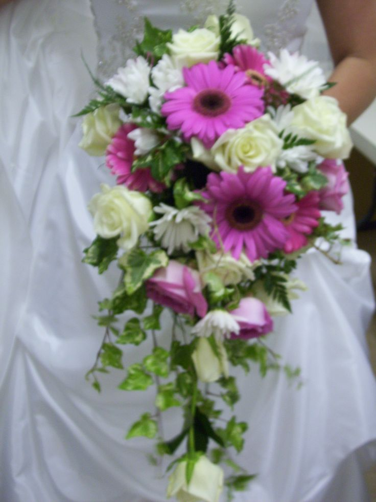 cascading bridal bouquet of white roses, pink roses, pink gerber daisies, white daisies and varigated ivy
