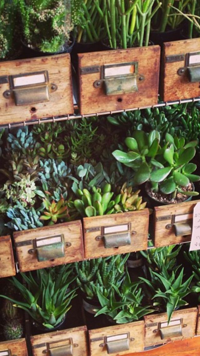 Upcycled Library Ticket Drawers | Herb Planters | www.ducotedchezvous.com