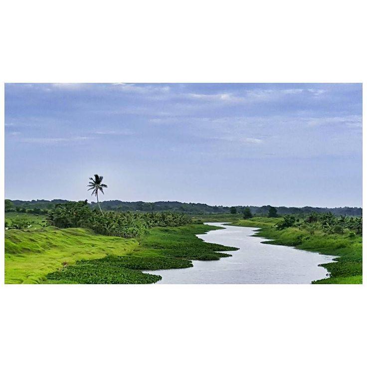 On instagram by pedropascual #landscape #contratahotel (o) http://ift.tt/2oHAzW1 Que Ahoga A Alguien No Es Caerse Al Rio Sino Mantenerse Sumergido En El.... . . #Rio #Riachuelos #agua #Mar #Oceanos #Vida #Paisajes #Verde #Verdor #Arboles #Orillas #Caminos #Love #Me #Fotos #Picture #Naturaleza #Palmeras #Nagua #Cabrera #Mayo #Igers #ig_dominicanrepublic @ig_dominicanrepublic  #RepublicaDominicana #PaisajesDominicanos #AlLadoDelCamino