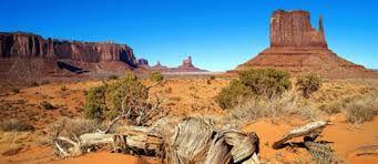 çöl biyomu ile ilgili görsel sonucu