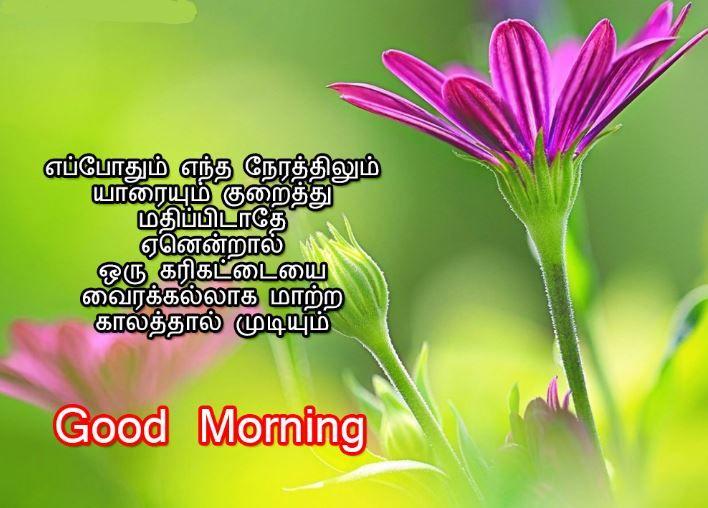 Latest Good Morning Images Tamil Kavithai Good Morning Images Morning Images Good Morning Beautiful Gif