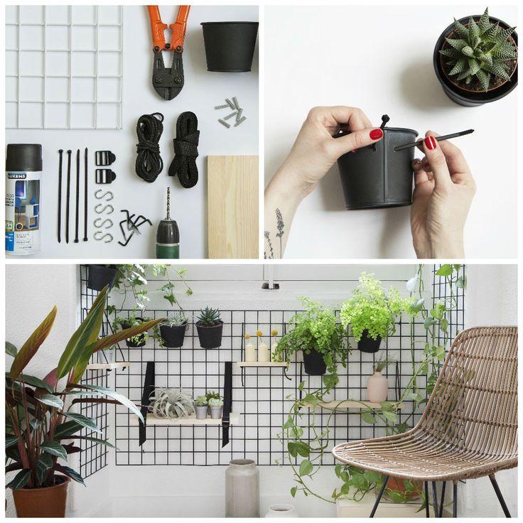 #DIY - Installer un mur végétal autour de votre fenêtre. #murvegetal #ideedeco #decoplantes