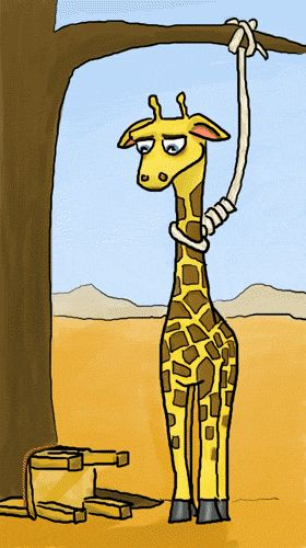 A giraffe's problem | haha.nu - the lifestyle blogzine