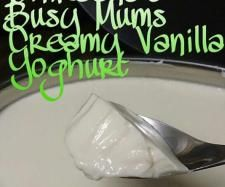 Recipe Busy Mums Creamy Vanilla Yoghurt by Shireena - Recipe of category Basics