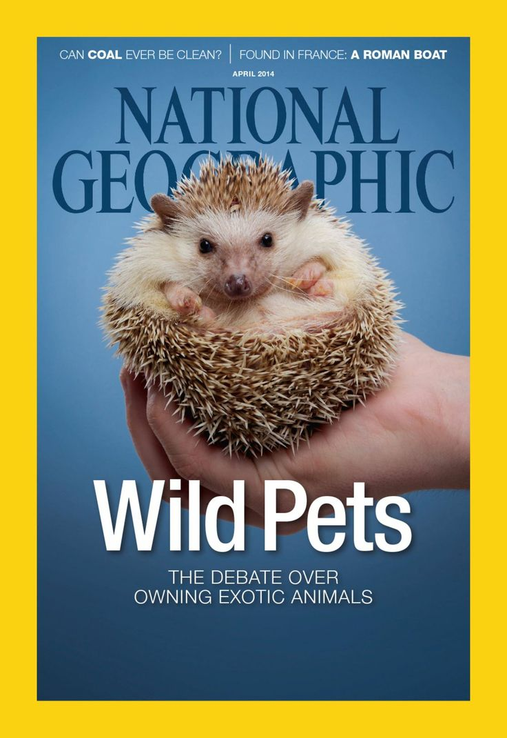 April 01, 2014 Issue Of National Geographic Interactive Read Full Issues  Online For Free