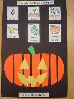 Mrs. T's First Grade Class: Life Cycle of a Pumpkin Halloween project freebie
