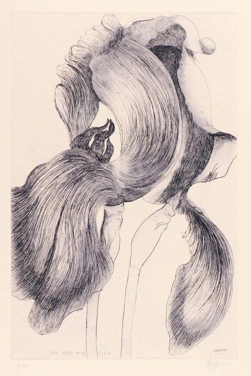 Leonard Baskin - Iris for Lisa