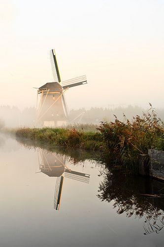 Fotograferen met mist - digitalefotografietips