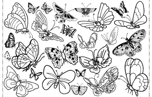 Freebie, Butterfly, Schmetterling, Malvorlage, malen, Facebook