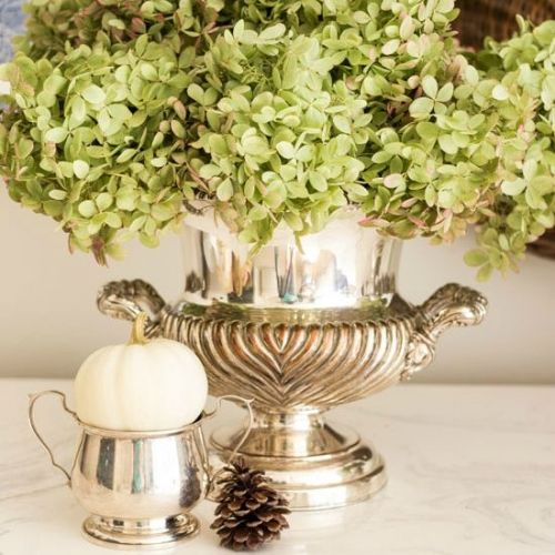 drying limelight hydrangeas fi