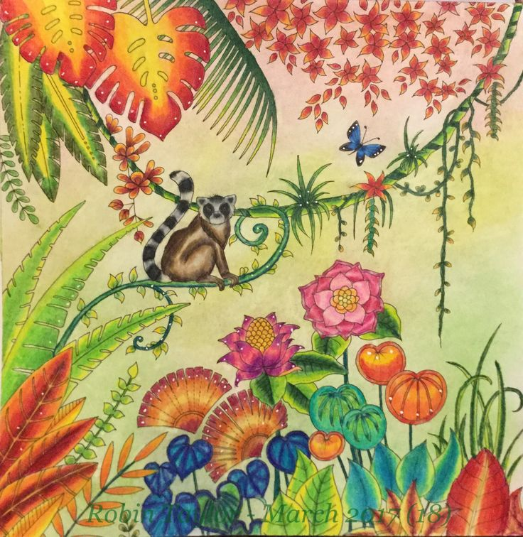 From Johanna Basfords Magical Jungle Colored With Prismacolor Premiers Posca Background