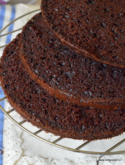 Moist cocoa cake/Blat umed cacao