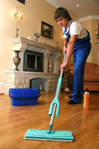 Hardwood Floor Cleaner