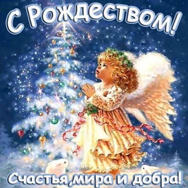 Открытка с рождеством и поздравление #рождество #рождественскиеоткрытки   Рождественские поздравления, Рождество христово, Рождественские изображения