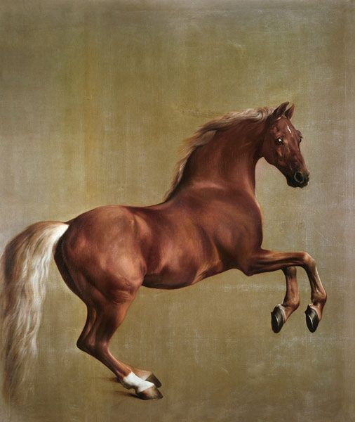 Whistlejacket by George Stubbs c. 1762.  I cried when i saw this painting in real life!