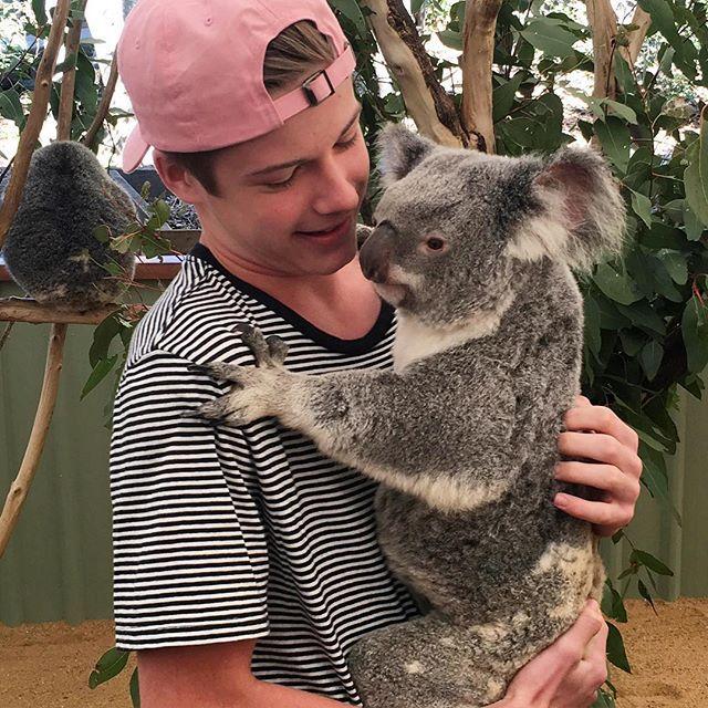 I HELD A KOALA