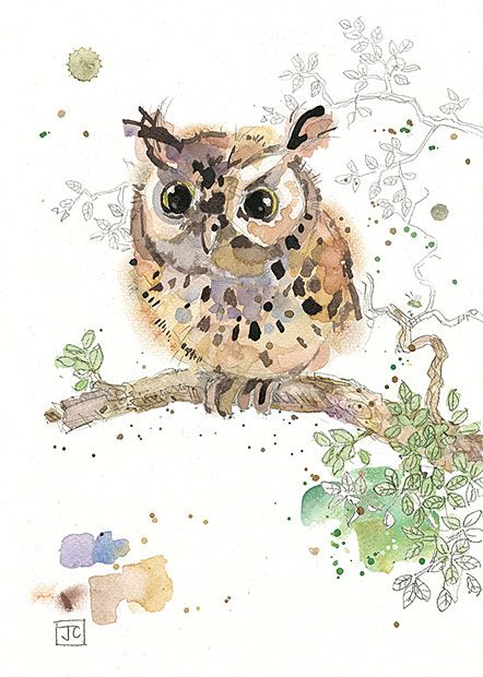 'Eared Owlet' by Jane Crowther