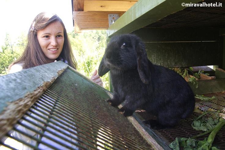 La nostra coniglietta Nerina oggi ha voglia di una bella passeggiata^^ #valdinon #coniglio