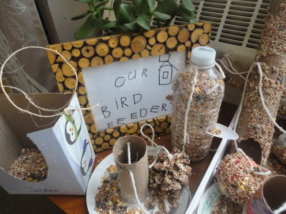 The bird feeder project. Bird inquiry, bringing the outdoors in.